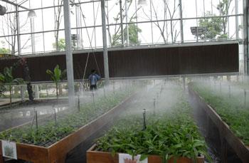 种植喷雾系统